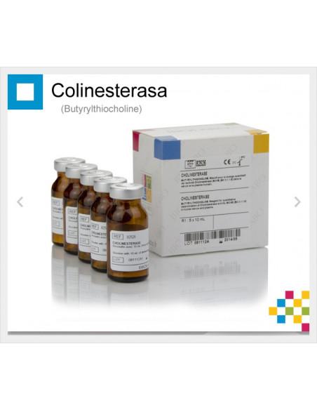 COLINESTERASA